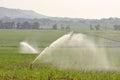 Irrigation sprinkler system on a sugarcane farm Stock Photography