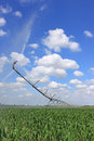 Irrigation system for agriculture Royalty Free Stock Photo