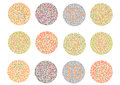 Ishihara Test. ,color blindness disease.