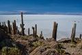 Isla incahuasi pescadores salar de uyuni bolivia Royalty Free Stock Image