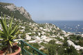 The island of Capri, Italy Royalty Free Stock Photo