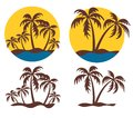 Island logos with a palm tree set of the tropical Stock Images