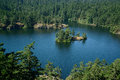 Island in thetis lake Stock Photography