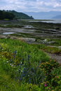 Isle-aux-Coudres, Quebec Royalty Free Stock Photo