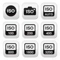 Iso camera film speed standard buttons set settings vector butttons isolated on white Stock Image
