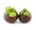 Isolate mangosteen Stock Photo