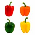 Isolated bell peppers four in red orange green and yellow Royalty Free Stock Image