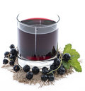 Isolated Black Currant juice Royalty Free Stock Photo