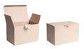 Isolated Cardboard Box Royalty Free Stock Photo