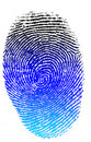 Isolated colorfull finger print Stock Photography