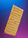 Isolated cracker cookie Royalty Free Stock Photo