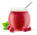 Isolated cranberry jelly Royalty Free Stock Photo
