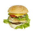Isolated double deck burger decker with beef patty cheese egg tomatoes onions and lettuce Royalty Free Stock Photos