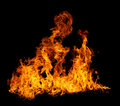 Isolated flames Stock Images