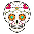 Floral ornamente head skull. Day of the dead Royalty Free Stock Photo