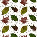 Isolated green and red leaves of different trees seamless collage pattern on a white with gold polka dots