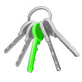 Isolated key ring with green one on white vector Royalty Free Stock Photo
