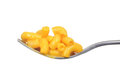 Isolated macaroni and cheese on a fork Royalty Free Stock Photo