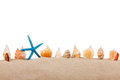 Isolated marine star and seashell on white background Royalty Free Stock Image