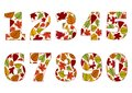 Isolated numbers from 0 to 9 with background of colorful autumn leaves. Vector
