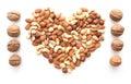 Isolated nuts heart shape and walnut raw Royalty Free Stock Photo