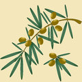 Isolated olive branch illustration of for your design Royalty Free Stock Photography