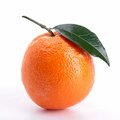 Isolated orange Royalty Free Stock Photography