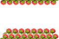 Isolated red flower strawberry fields red flowers in the sunrise it sports heads which reminds one of strawberries it Stock Photos
