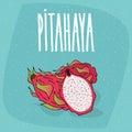 Isolated ripe pitaya or pitahaya or dragon fruit