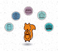 Isolated Squirrel And Pet Icon...