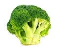 Isolated studio shot of fresh australian broccoli floret on white Stock Photography