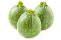 Isolated three round green zucchini on white Stock Images