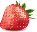 Isolerad realistisk jordgubbewhite för foto Arkivfoto