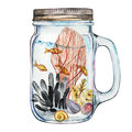 Isoleted Tumbler with Marine Life Landscape - the ocean and the underwater world with different inhabitants. Aquarium