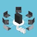 Isometric LAN network diagram Royalty Free Stock Photo