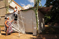 Israelis are preparing for the jewish holiday sukkoth sderot isr oct israeli women builds a sukkah on oct sukkah has at least Royalty Free Stock Photos