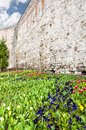 Istanbul City Wall 02 Royalty Free Stock Images