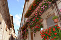 Italian alley in summer blooming red and pink geranium flowers on balconies and windows of old houses a typical of the ancient Royalty Free Stock Photo