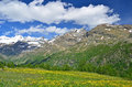 Italian alps high mountains at the head of the valpelline valley close to switzerland with alpine meadows in flower above aoste Stock Photo