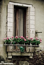 Italian architecture window in old building in venice Royalty Free Stock Photo