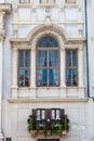 Italian balcony windows full of plants and flowers Royalty Free Stock Photo