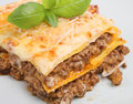 Italian Beef Lasagna Stock Photography