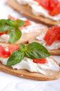 Italian bruschetta with tomato and cheese Stock Image