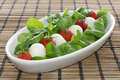 Italian Cheese mozzarella with tomatoes and salad Stock Photography