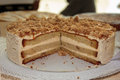Italian Coffe Cream Cake Royalty Free Stock Photo