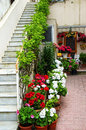 Italian courtyard flowers and steps italy Stock Images