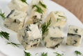 Italian cuisine cheese gorgonzolla food plate with blue Stock Photos