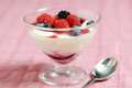 Italian dessert  panna cotta Royalty Free Stock Photo