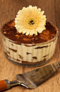 Italian dessert tiramissu of cheese decorated flower Stock Image