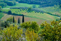 Italian fields Stock Images